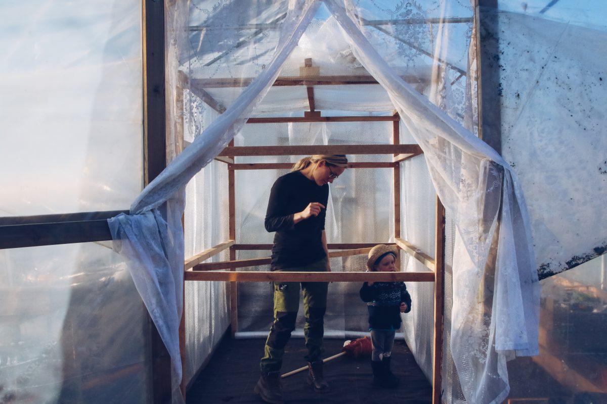 barn och växthus