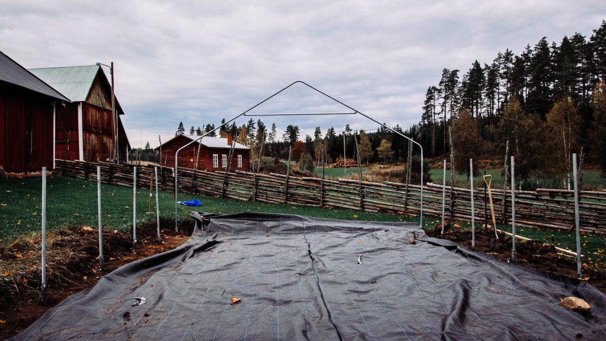 Tunnelväxthuset från Gjordnära